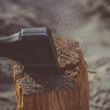 Espoir végétal  - Lassy - Cassage de bois
