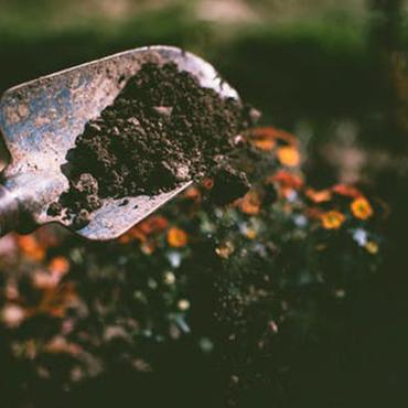Espoir végétal - Lassy - Actus - Espoir Végétal casse du bois avec sa fendeuse